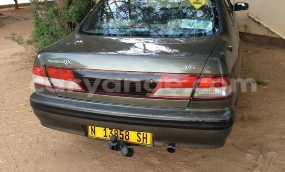 Buy Used Nissan Maxima Other Car in Windhoek in Namibia