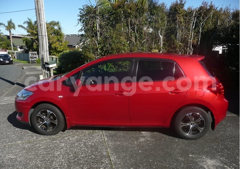 Big with watermark auris1