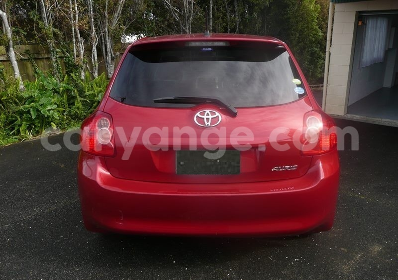Big with watermark auris1......