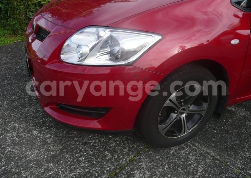Big with watermark auris1.....