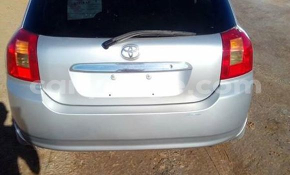 Buy Used Toyota Runx Silver Car in Windhoek in Namibia