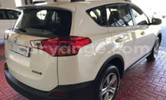 Buy Used Toyota RAV4 White Car in Windhoek in Namibia