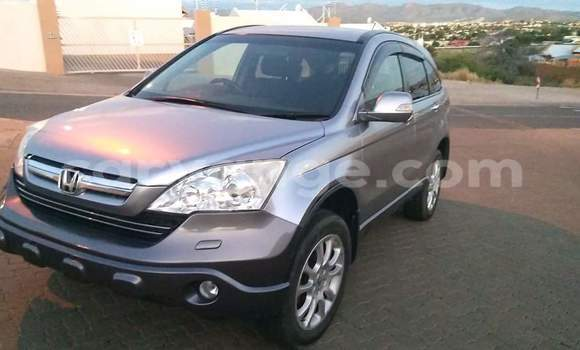 Buy Used Honda CR-V Silver Car in Windhoek in Namibia
