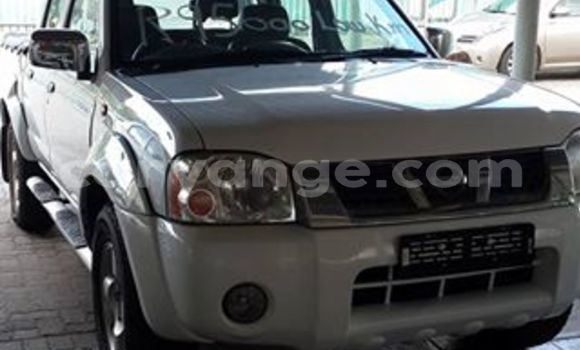 Buy Used Nissan Hardbody White Car in Windhoek in Namibia