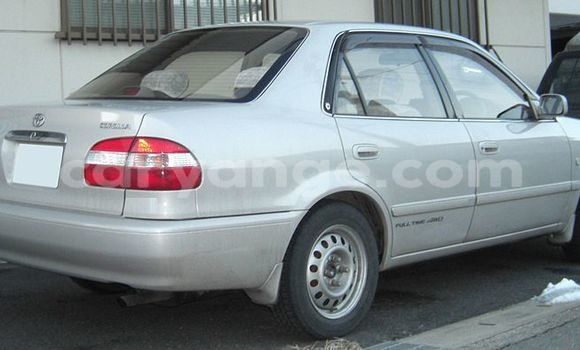 Buy Used Toyota Corolla Beige Car in Oshakati in Namibia