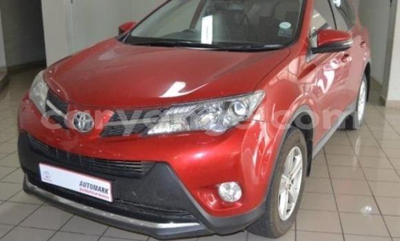 Buy Used Toyota RAV4 Brown Car in Walvis Bay in Namibia