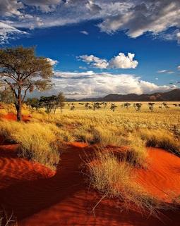 Thumb namibia 5